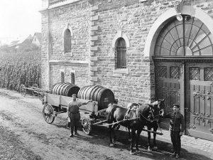 Winninger Weingeschichte(n)