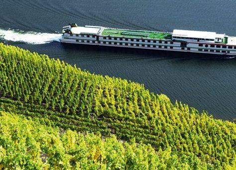 Blick vom Weinberg auf die Mosel mit Schiff